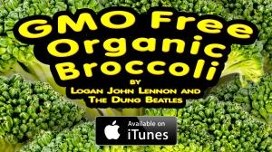 GMO Free Organic Broccoli